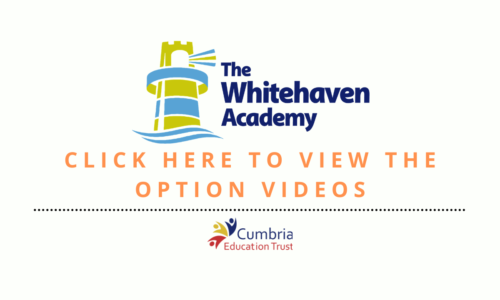 Options Videos Button (2)